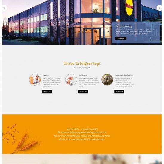 Websitereferenzen_Eifrisch_Startseite
